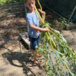 Impressionen vom Eltern-Kind-Bautag